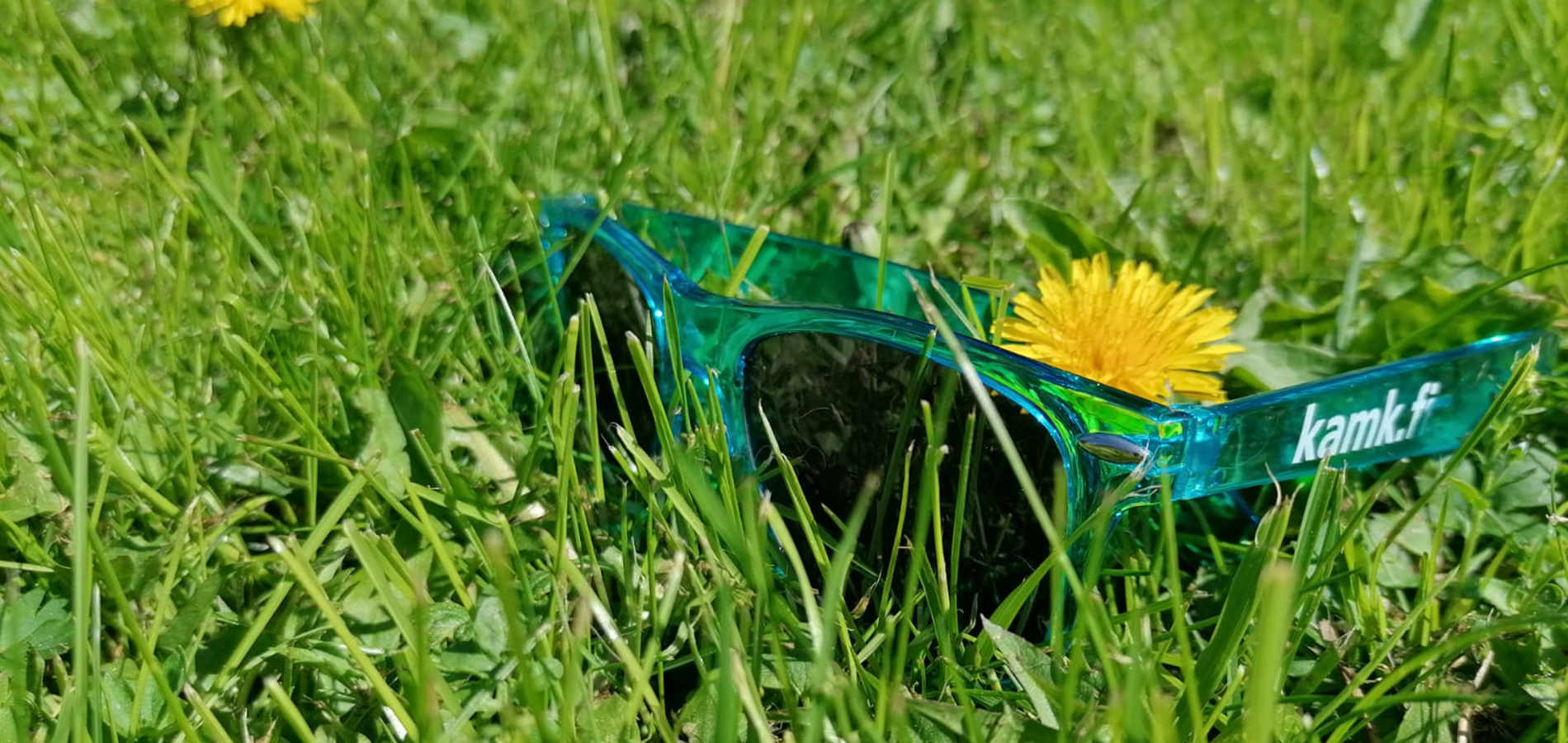 Picture of sunglasses on the grass.